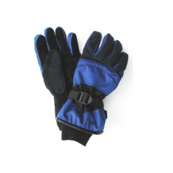 Art. R127 Ski Gloves
